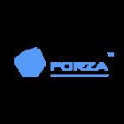 Forza construction